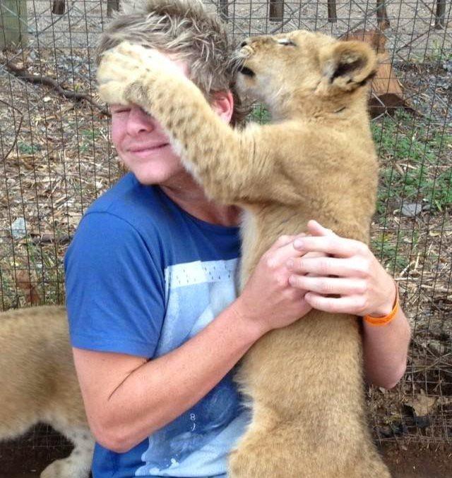 Steve Smith. Lion Tamer