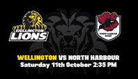 Lions-vs-North-Harbour 2