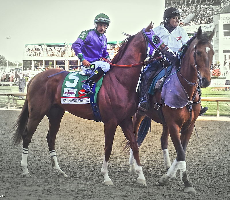 California Chrome (left) in the post parade for the 2014 Kentucky Derby