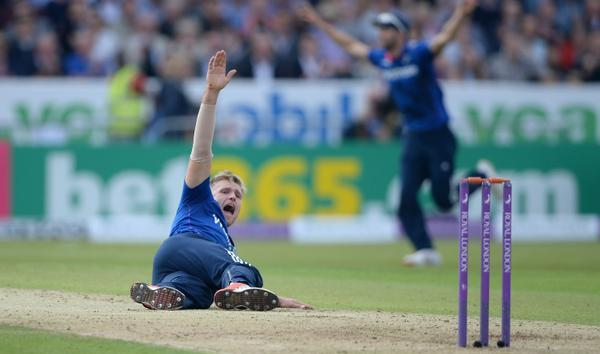 David Willey appeals