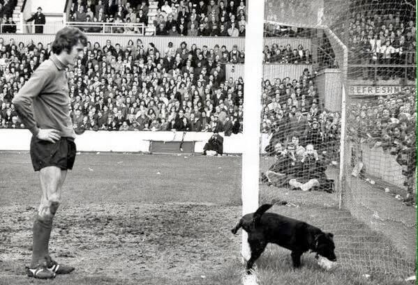 Upton Park 1977