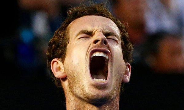 Andy Murray meme