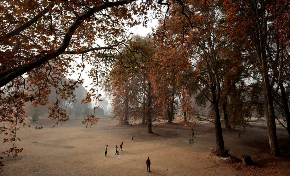 kashmiri-boys-play-cricket-under-the-chinar-trees-in-the-nishat-garden