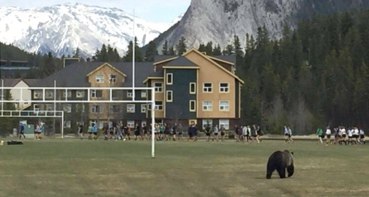 rugby in Canada